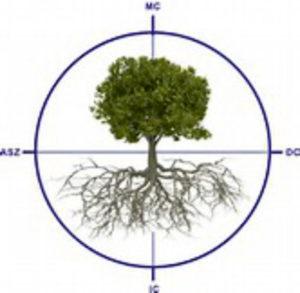 Ayurveda-Plus-Psychologische-Astrologie_Astrobaum